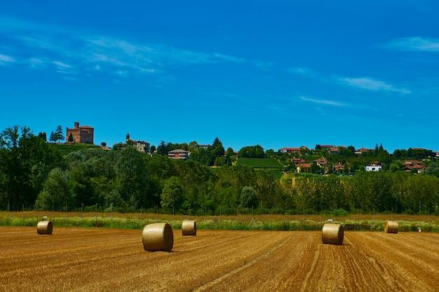 穀物を収穫した後、刈り取られた畑に横たわる大きなわらのロール