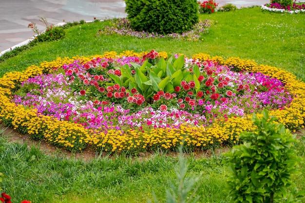 꽃이 만발한 진달래, 드워프 침엽수 및 산책로의 조경 디자인이 있는 큰 원형 정원 침대. 봄 꽃이 만발한 정원과 시골집 뒤뜰의 아름다운 사진.