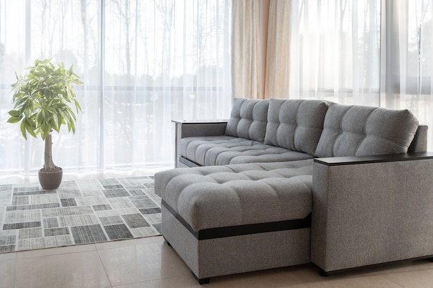 Big sofa, plant and large windows interior design with morning sunlight from the outside