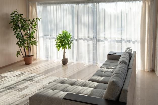Большой диван, растения и большие окна в интерьере с утренним солнечным светом из окон.