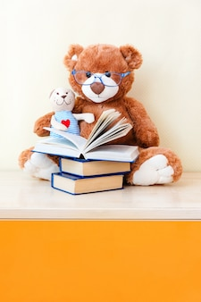 Big toy bear reading an book for small toy teddy bear