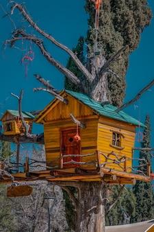 秋の大きな木の家。縦の写真