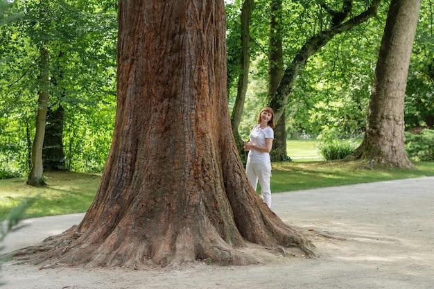 公園の幹が太い大きな木