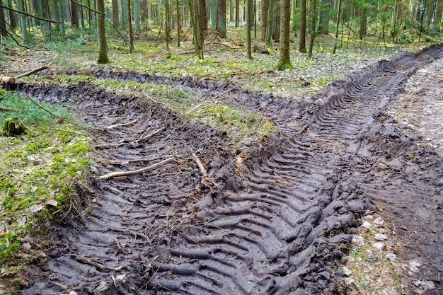 숲에서 큰 트럭 트랙터 또는 불도저 로더 타이어 바퀴