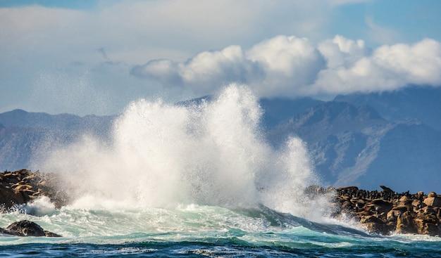 海岸線を背景に海の岩で大きな波が砕ける。