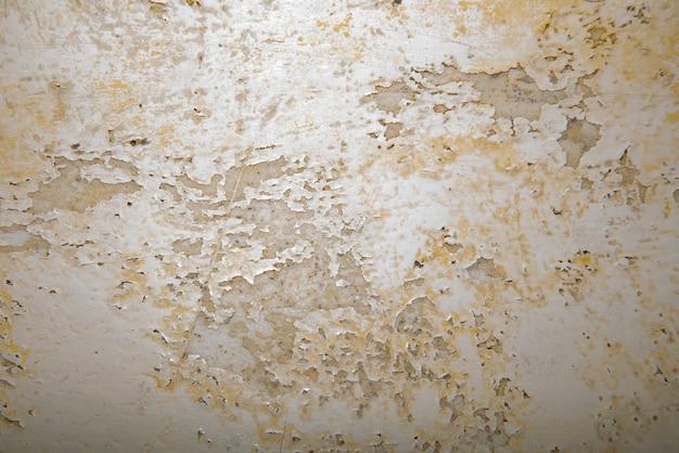 벽에 큰 젖은 반점과 균열 및 검은 곰팡이