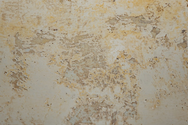 Big wet spots and cracks and black mold on the wall near flour in domestic house room after heavy rain and lot of water.