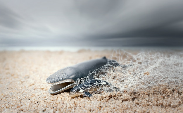 大きなクジラと赤ちゃんイルカが漁網に絡まりました。環境保護とプラスチック意識の概念