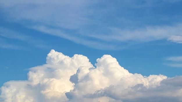 青い空に浮かぶ大きな白い巻き毛の雲