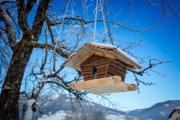 Big wooden nesting box hanging on tree branch