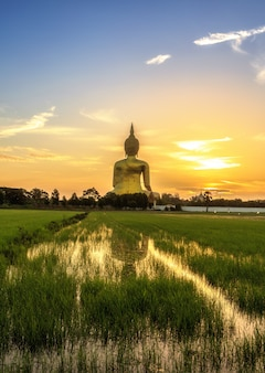 The biggest buddha image in thailand under sunrise