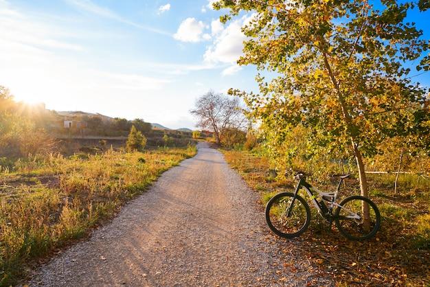 Bike at parque de turia of valencia park sunset
