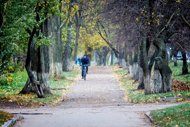 秋の公園で自転車に乗る。アクティブなライフスタイル。街の秋
