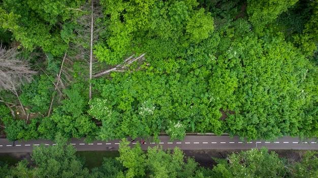 Велосипедная дорога через летний зеленый лес, вид с воздуха