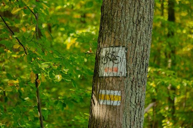 폴란드의 숲에서 자전거 경로 기호