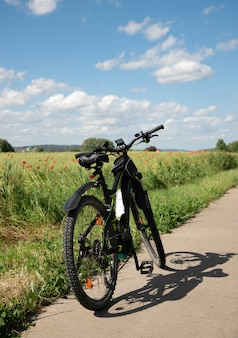 A bike with electric drive stands on a stone path next to the spring green field with red poppies