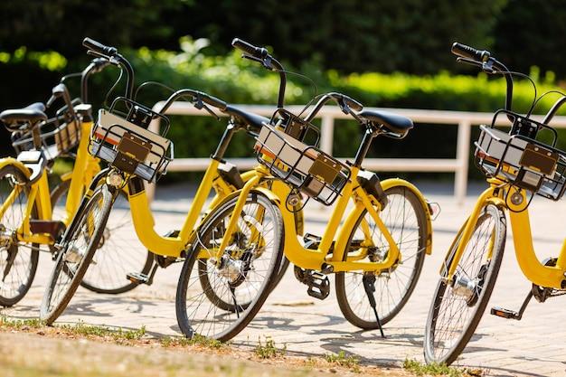 Прокат велосипедов на стоянке в городе