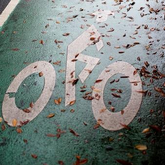 Biking lane symbol in manhattan, new york city, u.s.a.