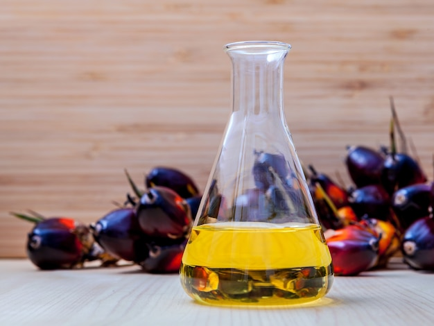 Bio diesel in laboratory glass and red palm fruits .
