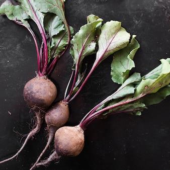 Bio radishes set on black background