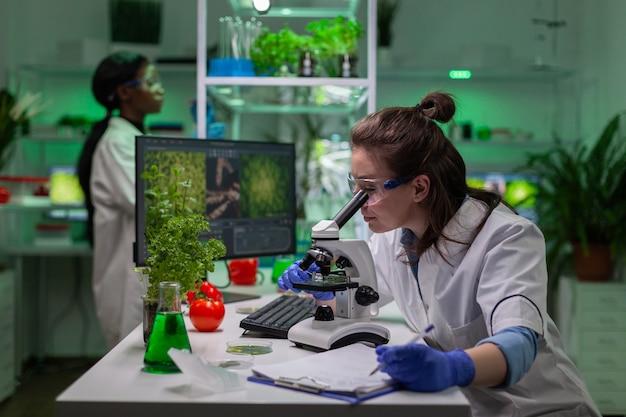 유전 연구원을 위해 현미경을 사용하여 화학 검사를 검사하는 생화학 의사. 생물학 전문가는 미생물학 식품 실험실에서 일하는 동안 유기농 유전자 변형 식물을 발견합니다.