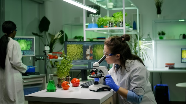 Biologist researcher analyzing biological slide for agriculture expertise using microscope