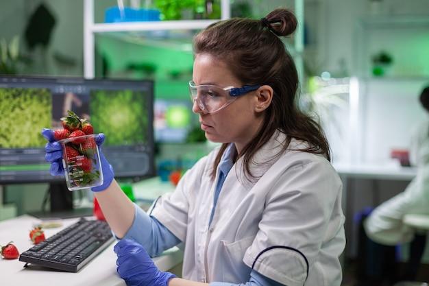 미생물학 의학 전문 지식을 위해 과일을 검사하는 유기농 딸기를 보고 있는 생물학자. 약리학 농업 연구실에서 일하는 화학자 과학자들은 식품에서 유전적 돌연변이를 발견합니다.