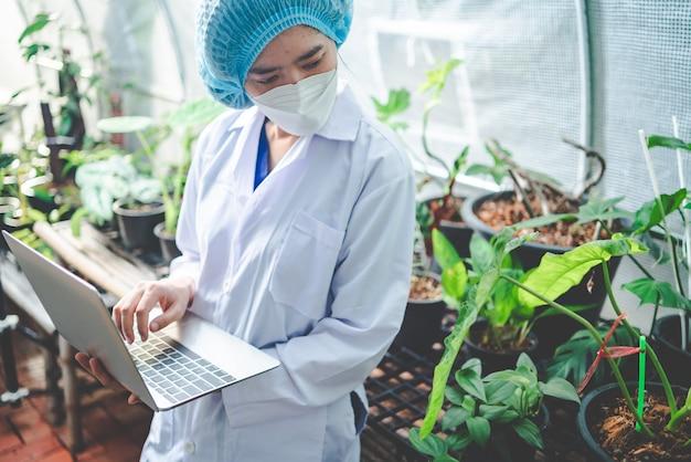 농업 온실에서 성장 식물을 연구하는 생물학 과학자, 식물학 실험실에서 자연 유기 과학 기술 또는 생명 공학, 식품 산업을 위해 야채를 조사하는 사람들
