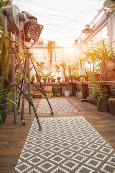 Biophilia trend style. details of courtyard with potted houseplants.