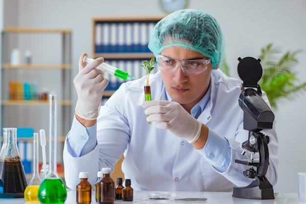 Biotechnology scientist working in the lab
