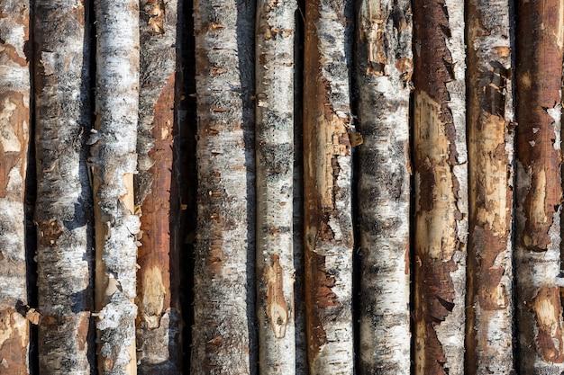 자작 나무 행에 기록합니다. 나무는 스택으로 쌓입니다. 재목. 고품질 사진