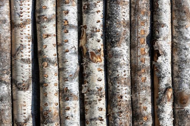 バーチは行にログインします。木は積み重ねられています。木材。高品質の写真