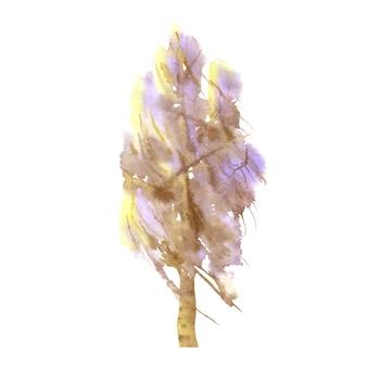 白地に白樺。手描きの冬の木。水彩イラスト。