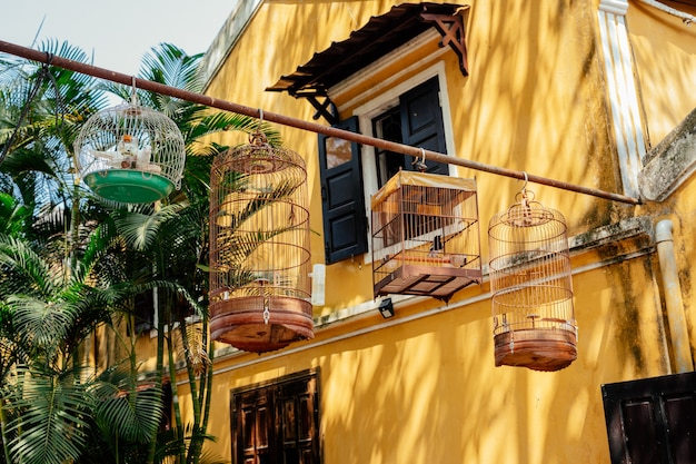 Bird cages with songbirds hang next to a house