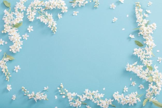 紙の背景に鳥桜の花