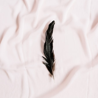 Bird feather on pink textile surface