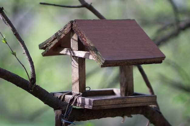 A bird feeder in the form of a house with a wooden roof hangs on a tree