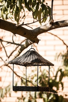 Кормушка для птиц висит на ветке дерева с зелеными листьями