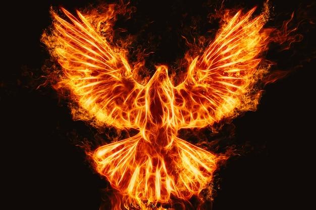 Bird fire abstract background