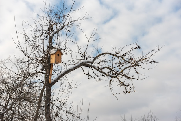 Bird house hanging on a apple tree. snow and frost on the roof and branch. concept of caring for birds in winter.