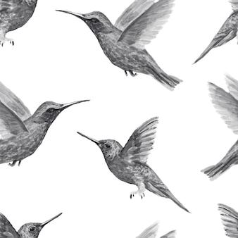 Птица колибри акварель handdrawn иллюстрация патерн бесшовные