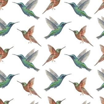 Птица колибри акварель handdrawn иллюстрация