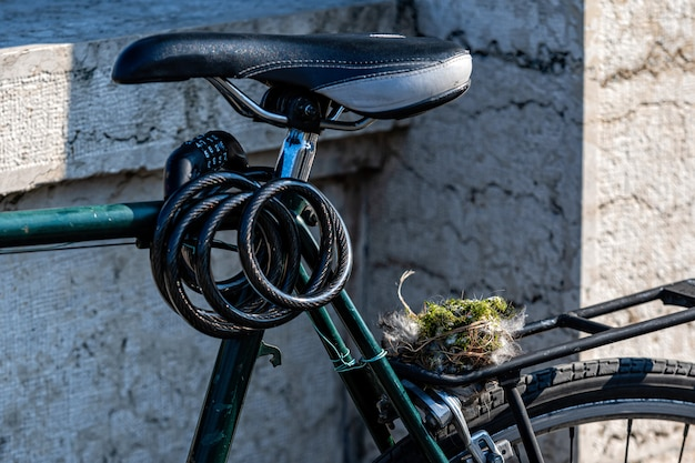 A bird nest, collected from the forest sits on a bike carrier