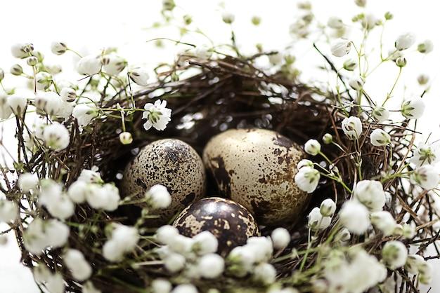 흰색 작은 꽃으로 장식된 작은 알이 있는 새 둥지. 행복한 부활절 축하, 부활절 사냥