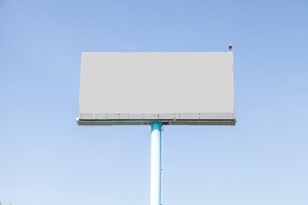A bird perching on gray empty billboard against blue sky
