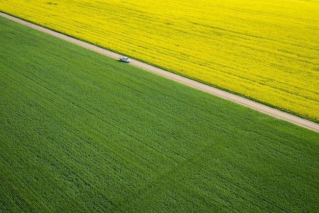 Bird's-eye view of a large field with a narrow road in the middle during a sunny day