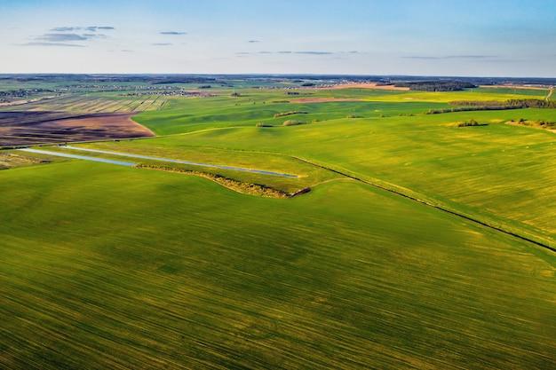 緑の野原の鳥瞰図。ベラルーシでの播種キャンペーン。ベラルーシの自然。日没時の自分の緑の野原。