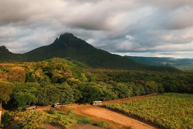 Вид с высоты птичьего полета на красивые поля острова маврикий и горы