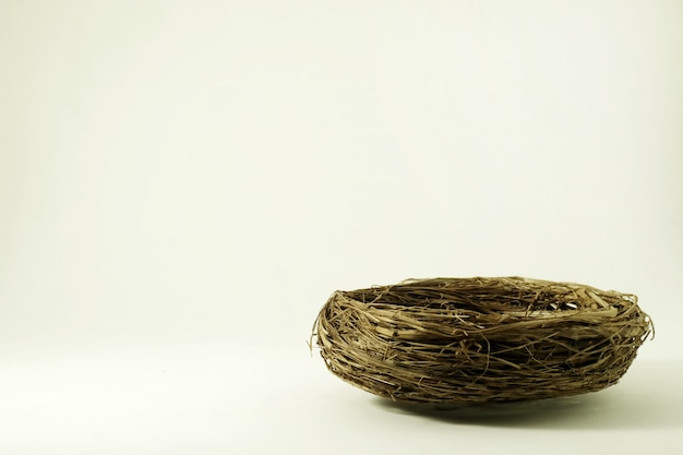 Bird's nest on a white scene.