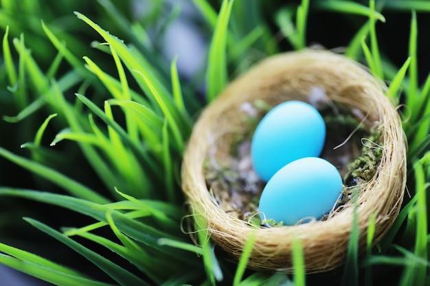 계란이 있는 새 둥지. 버드나무 가지와 첫 번째 채소. 부활절 배경입니다. 성지 주일. 기독교 휴일입니다. 봄 배경입니다.